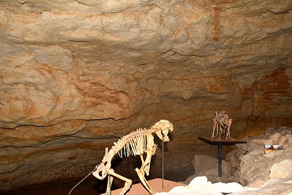 cave3